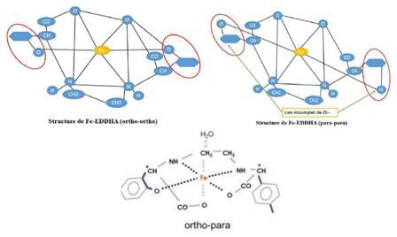 structure moléculaire du Fer